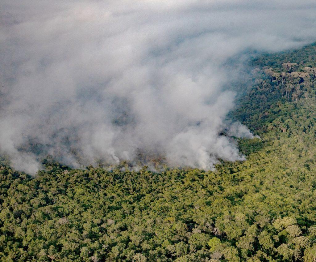 Después de hacer promesas ambientales: Bolsonaro recorta más de 43 millones de dólares del presupuesto de Medioambiente - abril 24, 2021 10:00 am - NOTIGUARO - Internacionales