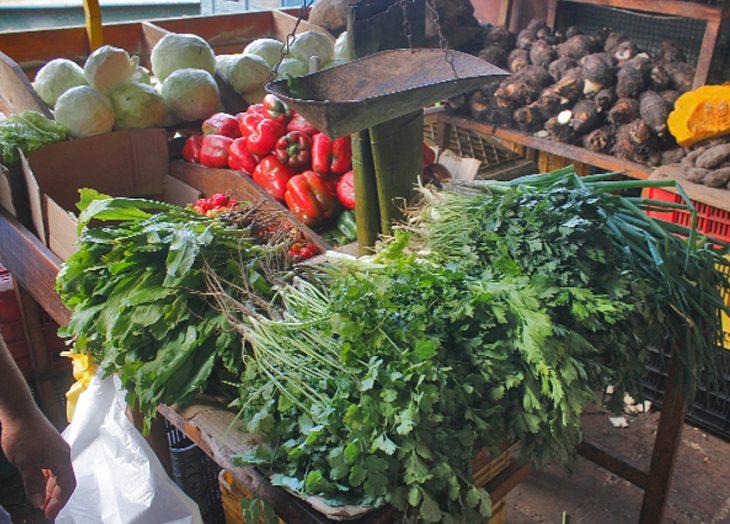 Fedeagro: Precios de productos agrícolas aumentan hasta 78% debido a la escasez de combustible - septiembre 12, 2021 6:30 am - NOTIGUARO - Economia